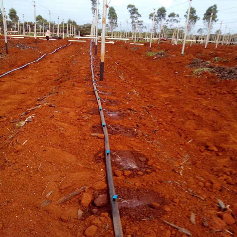海南树林灌溉工程