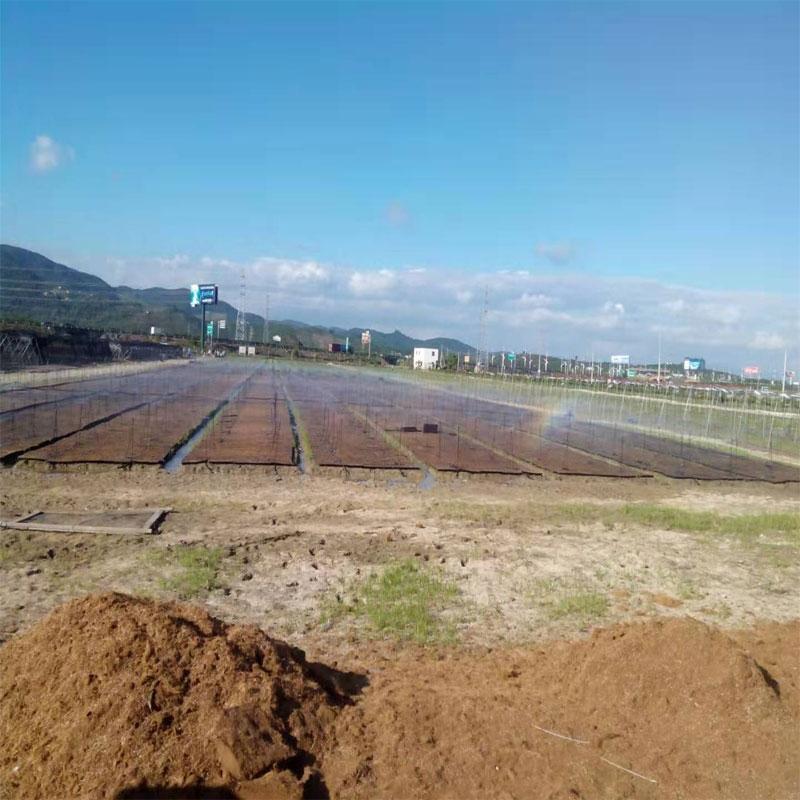 海南农业灌溉工程