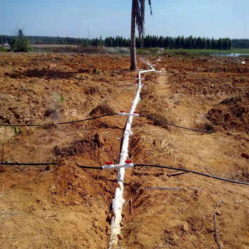 海南园林滴灌工程