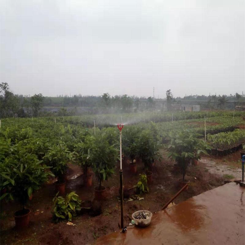海南苗圃灌溉工程